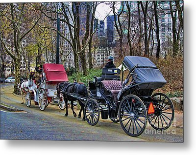 Park Carriage  Metal Print by Chuck Kuhn