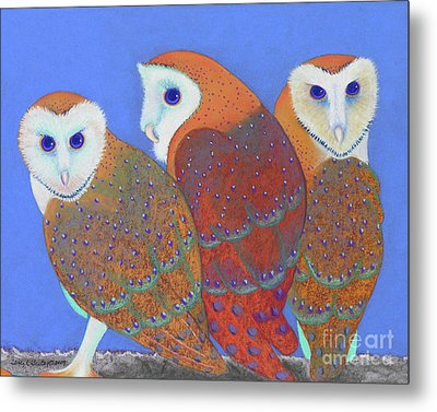 Parliament Of Owls Detail 2 Metal Print by Tracy L Teeter
