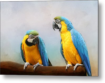 Parrot Metal Print by Heike Hultsch