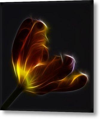 Parrot Tulip Abstract Metal Print by Robert Ullmann