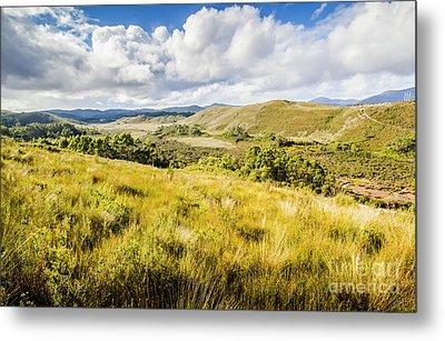 Parting Creek Regional Reserve Tasmania Metal Print by Jorgo Photography - Wall Art Gallery