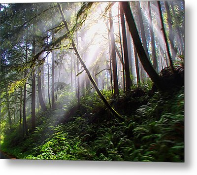 Parting Of The Mist Metal Print