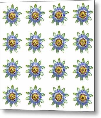 Passion Flower Design Metal Print