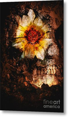 Past Life Resurrection Metal Print by Jorgo Photography - Wall Art Gallery