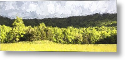 Pastural Grounds II Metal Print by Jon Glaser