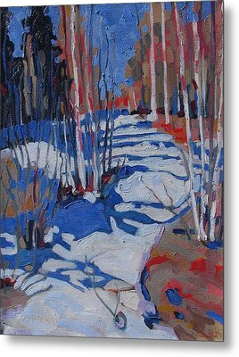 Path Behind Mowat Lodge Metal Print by Phil Chadwick