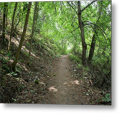Metal Print featuring the photograph Path By The River by Ben Upham III
