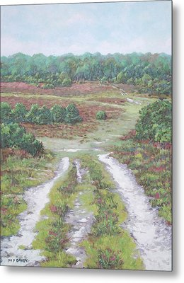 Path In New Forest  Metal Print by Martin Davey