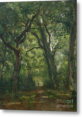 Path In The Forest Metal Print by Henri Joseph Constant Dutilleux