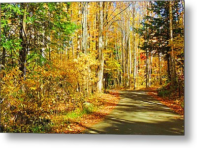 Path Of Gold Metal Print