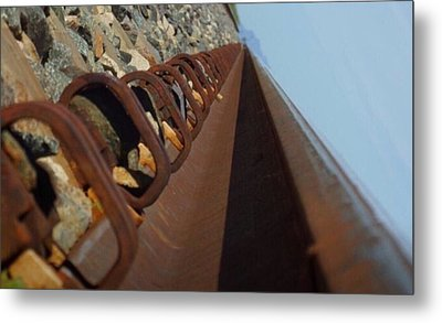 Path Of Life Metal Print by Chereece Smyser