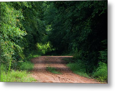 Metal Print featuring the photograph Path Of Light Horizontal by Shelby Young
