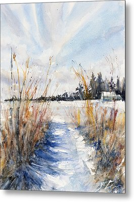 Path Shadows In The Way Back Metal Print by Judith Levins