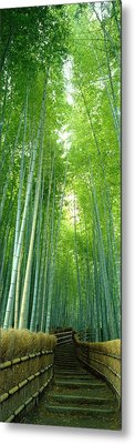 Path Through Bamboo Forest Kyoto Japan Metal Print