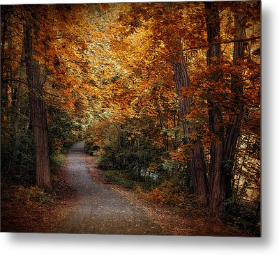 Path To Autumn  Metal Print by Jessica Jenney
