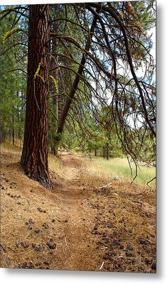 Metal Print featuring the photograph Path To Enlightenment 2 by Ben Upham III