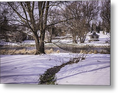 Path To The River Metal Print by Anne Witmer