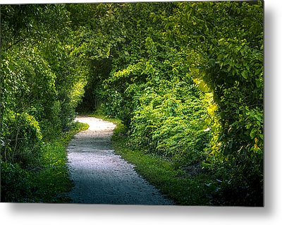 Path To The Secret Garden Metal Print