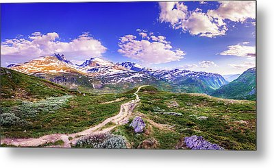 Metal Print featuring the photograph Pathway To A Valley by Dmytro Korol