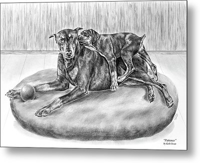 Patience - Doberman Pinscher And Puppy Print Metal Print by Kelli Swan
