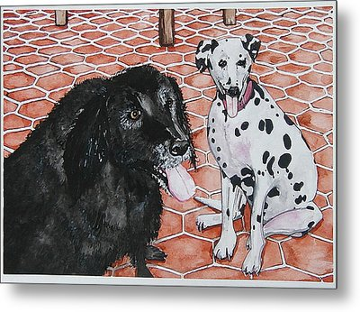 Patio Dogs Metal Print by Laura Brightwood