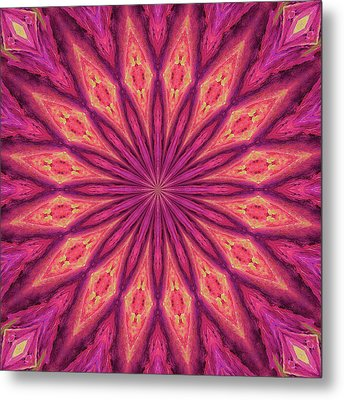 Metal Print featuring the digital art Pattern I by Elizabeth Lock