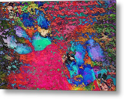 Paw Prints Colour Explosion Metal Print