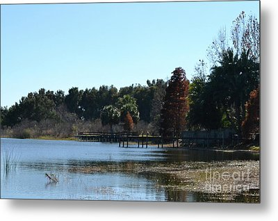 Metal Print featuring the photograph Peace by Carol  Bradley