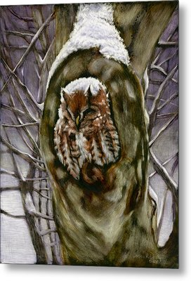 Peace In The Storm - Eastern Screech Owl Metal Print by Susan Donley