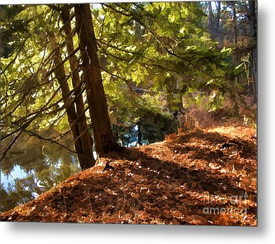 Metal Print featuring the photograph Peace On Earth by Betsy Zimmerli