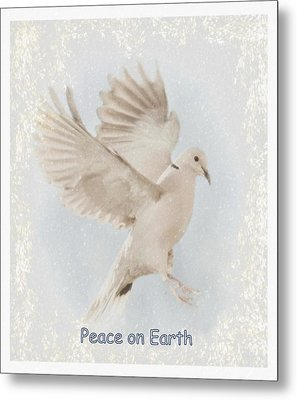 Metal Print featuring the photograph Peace On Earth by Diane Alexander