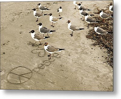 Peace On The Beach Metal Print by Marilyn Hunt