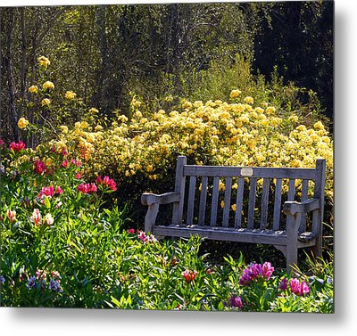 Peaceful Metal Print by Amy Fose