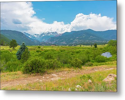 Peaceful Meadow Metal Print