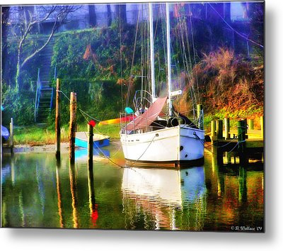 Metal Print featuring the photograph Peaceful Morning In The Cove by Brian Wallace