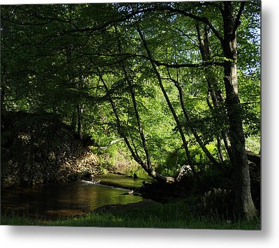Metal Print featuring the photograph Peaceful Mountain Stream by Diannah Lynch