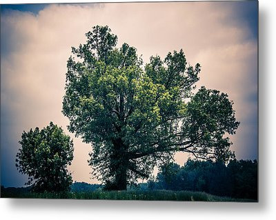 Peaceful Place Along Busy Highway  Metal Print