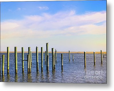 Metal Print featuring the photograph Peaceful Tranquility by Colleen Kammerer