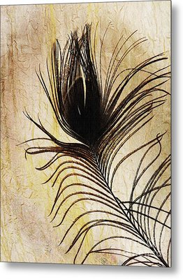 Peacock Feather Silhouette Metal Print by Sarah Loft