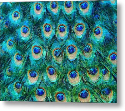 Peacock Feathers Metal Print by Nikki Marie Smith