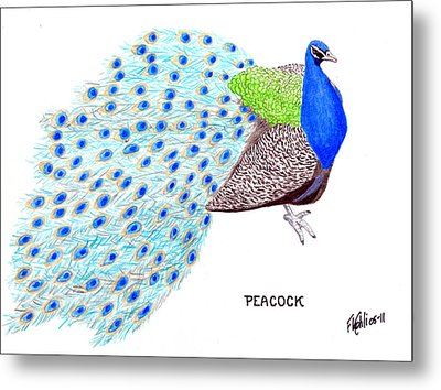Peacock Metal Print by Frederic Kohli