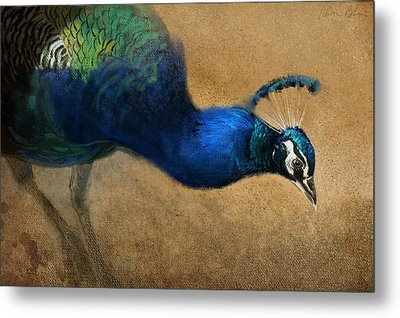 Peacock Light Metal Print by Aaron Blaise