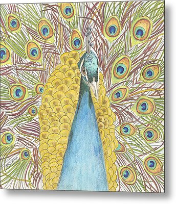 Metal Print featuring the drawing Peacock Two by Arlene Crafton