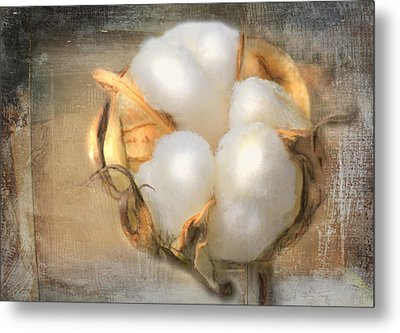Pearly White Metal Print by Barry Jones
