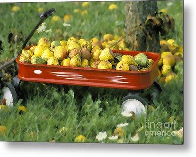 Pears In A Wagon Metal Print by Gordon Wood
