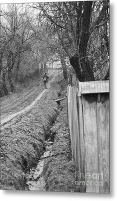 Peasant Man On A Muddy Road Metal Print by Gabriela Insuratelu