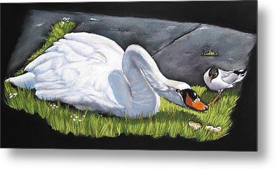 Pecking Order Metal Print by Vanda Luddy