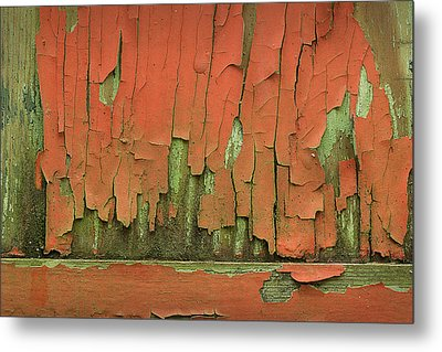 Metal Print featuring the photograph Peeling 4 by Mike Eingle