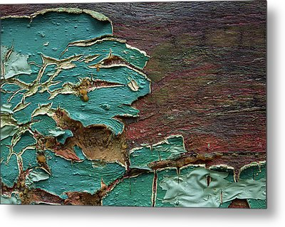 Metal Print featuring the photograph Peeling by Mike Eingle