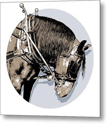 Pei Tour Horse Metal Print